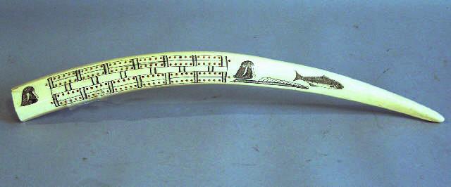 Ivory Tusk Cribbage Board www.cribbagecorner.com